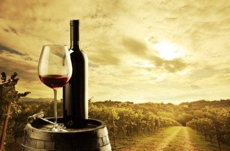 Click here for The Urban Lists weekend guide to the Hunter Valley
