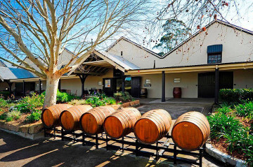 Sydney Siders Essential Guide to Hunter Valley Wine Tours